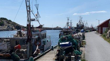Fiskebåter Juli2021